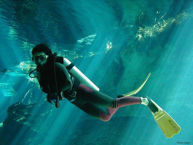 image credit: andamandivecenter.com