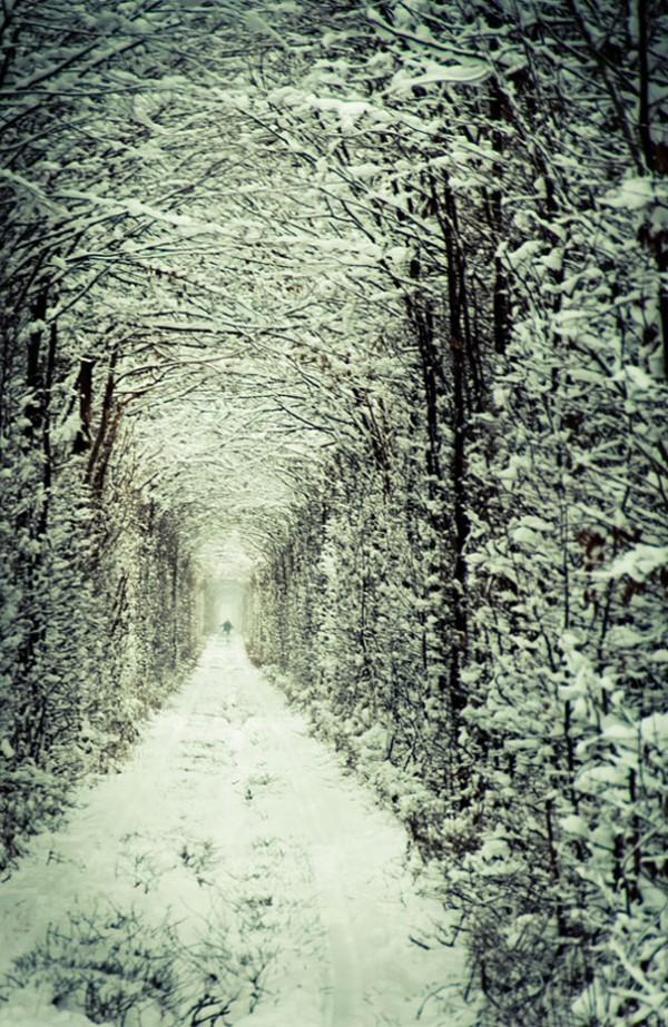 Tunnel-of-Love-in-Ukraine-3-600x923